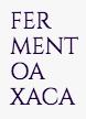 https://www.fermentoaxaca.com/